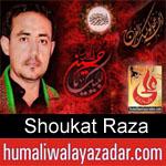 https://www.humaliwalyazadar.com/2018/08/shoukat-raza-nohay-2019.html