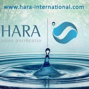 Bisnis Direktori Indonesia Hara International Indonesia