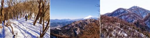 e0d739c5e8 1月31日(土) 丹沢 大室山 スノーハイキング 参加者:1名西丹沢自然教室~犬越路避難小屋~1400m付近(往復)