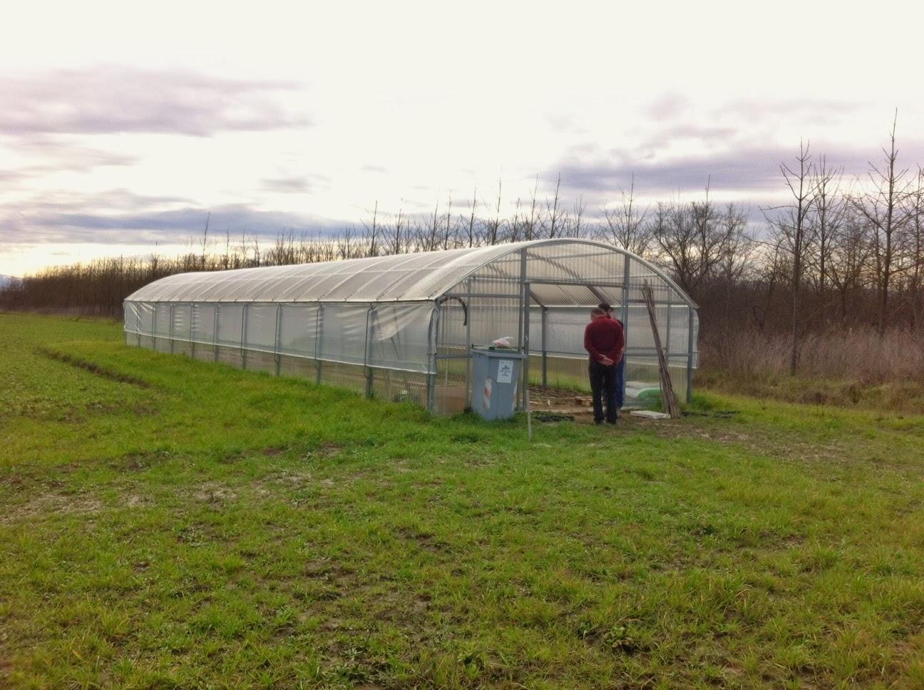 La nostra serra inizia a popolarsi la semente for La serra progetta le planimetrie