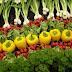 How to begin an Organic Farm