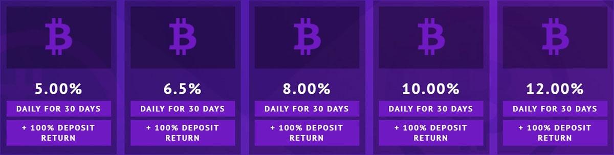 Инвестиционные планы Royal Crypto