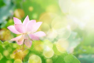 Ātmakāraka – doświadczenie duszy (cz. I, teoria)