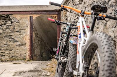 Die besten Touren im Herbst mit dem Mountainbike