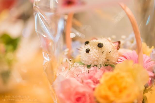 出演者に送られた祝い花の写真