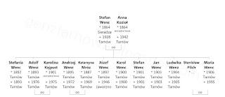 Stefan nie był pierwszym Wencem w Tarnowie