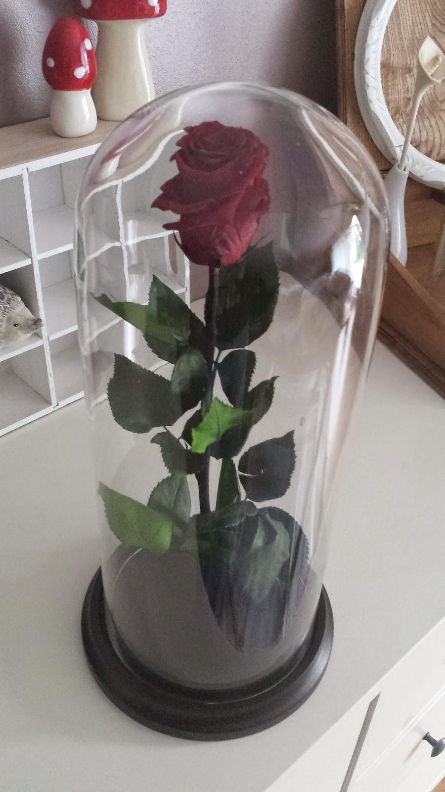 by junko diy d co ma rose ternelle on y est. Black Bedroom Furniture Sets. Home Design Ideas
