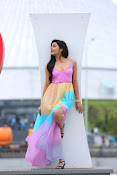 Avanthika New sizzling photos gallery-thumbnail-2