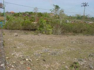Penertiban Tanah Milik Negara