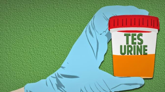 Ribuan Guru SD dan SMP Mengikuti Tes Urine Oleh BNN