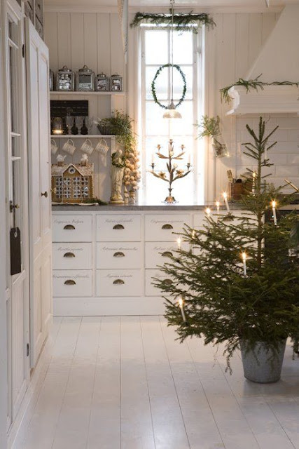 Small Christmas tree in a kitchen
