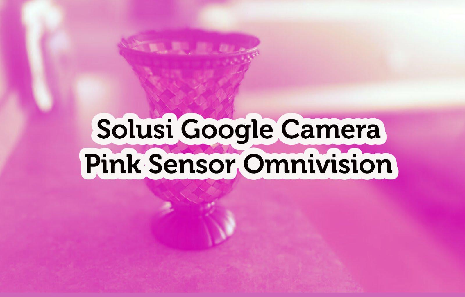 Solusi Google Camera Pink Sensor Omnivision