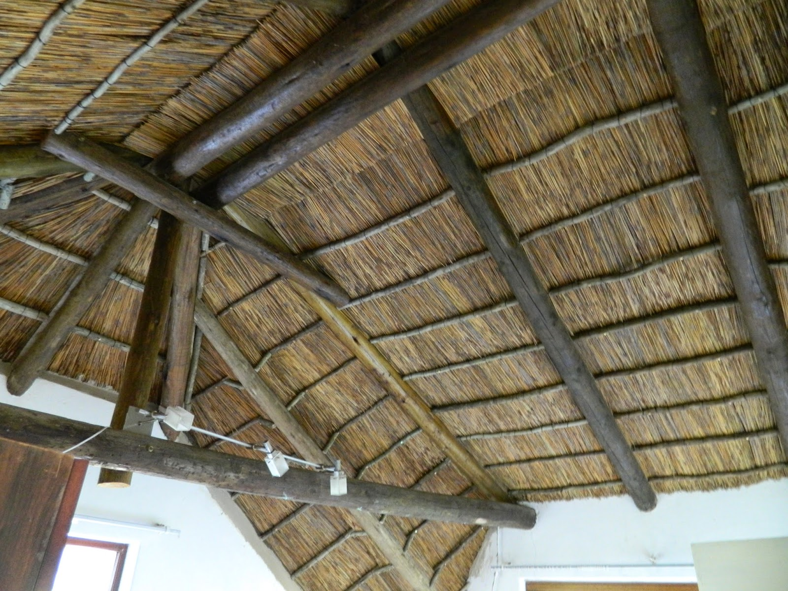 Change a Thatch Roof to Onduvilla Tiles