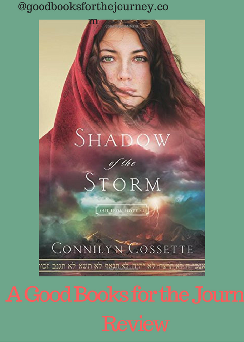 Review of Christian fiction Shadow of the Storm
