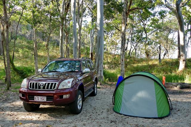 Auto Zelt Camp campen Wald wild Wildnis Abenteuer