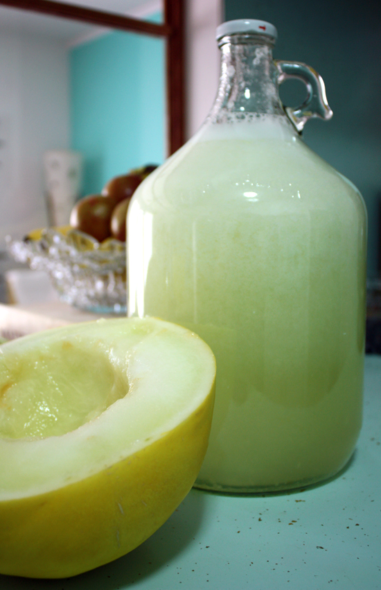 Honeydew Agua Fresca by Full and Content