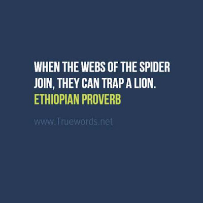 When the webs of the spider join, they can trap a lion
