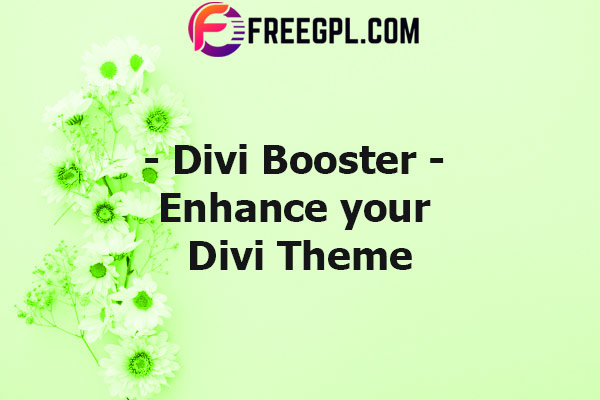 Divi Booster – WordPress Plugin Nulled Download Free