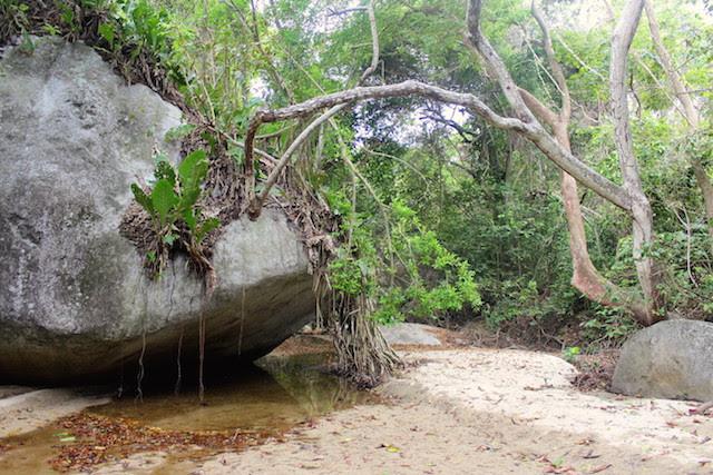 Trek to Pueblito, Tayrona National Park, Colombia