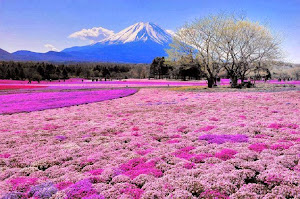 Paket Tour Jepang Tokyo Osaka Hamamatsu Lengkap