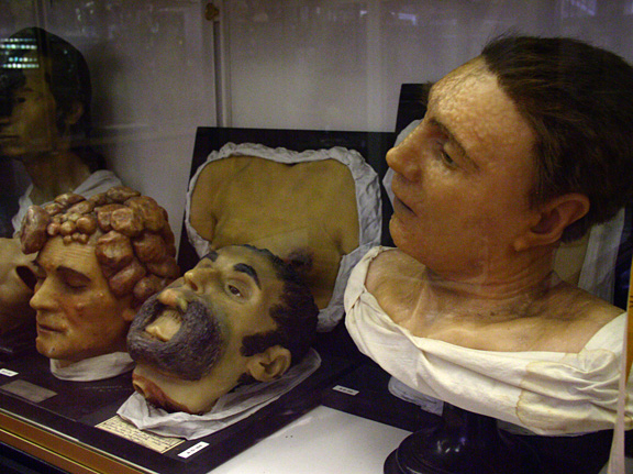 Morbid Anatomy: Sign Petition to Save the the Wonderful Musée ...
