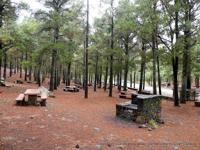 Zona de asaderos en los Llanos de la Pez