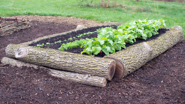 Sleeper Planter Kits