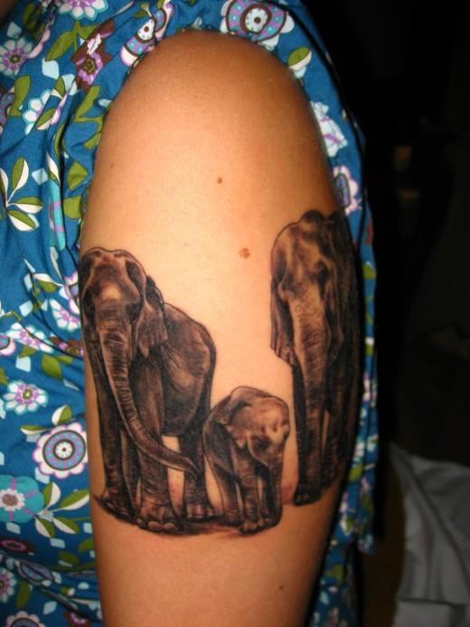 Elephant Tattoo Ideas: 2011 Elephant Tattoo Designs For Girls And Women