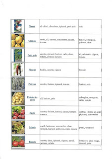 Bien associer les légumes au jardin - Partie 3