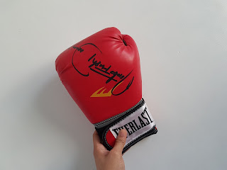 Nonito Donaire Autographed  Everlast Boxing Gloves