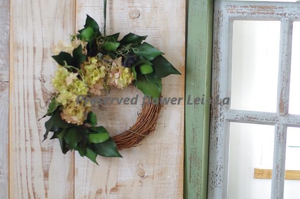 http://leila365.shop-pro.jp/?pid=122764240