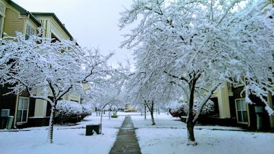 oindree banerjee ohio winter 2014