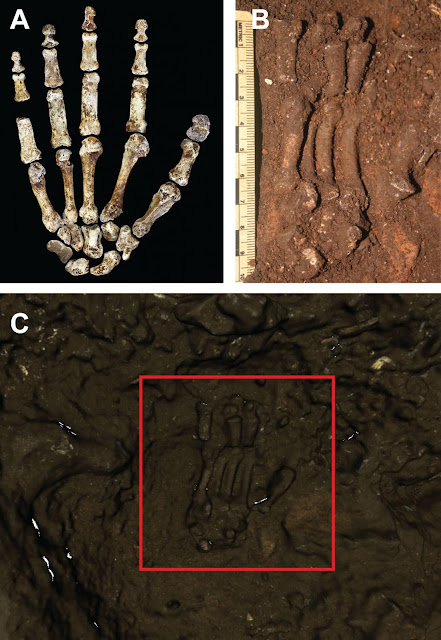 High-tech 3D mapping of Homo naledi's Dinaledi chamber