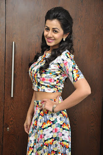 Actress Nikki Galrani Pictures at Krishnashtami Success Meet  0022