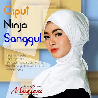 Ciput Ninja Sanggul
