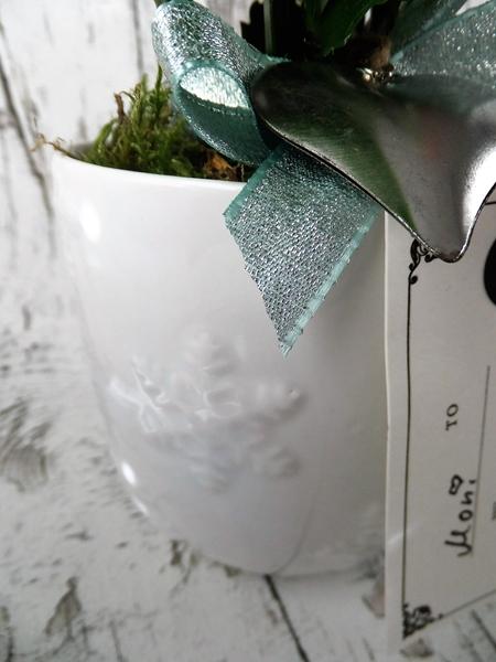 Tasse als Blumentopf