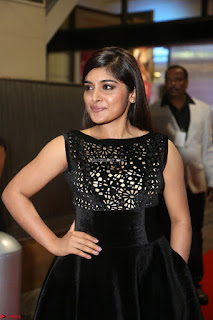 Niveda Thomas Black Sleeveless Cute Dress at 64th Jio Filmfare Awards South 2017 ~  Exclusive 090.JPG