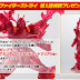Gundam Build Fighters Campaign: HGBF 1/144 Build Burning Gundam Red Clear ver. (FOR JAPAN USE ONLY)