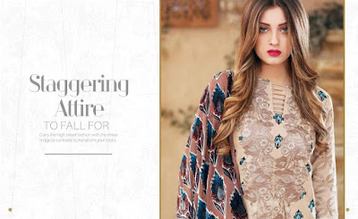 charizma-bloom-winter-embroidered-velvet-pashmina-shawl-collection-8