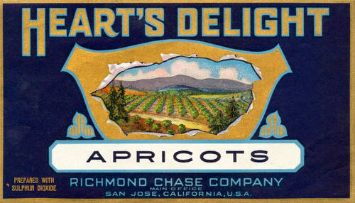 Heart's Delight apricot fruit crate label from San Jose Public Library on Calisphere