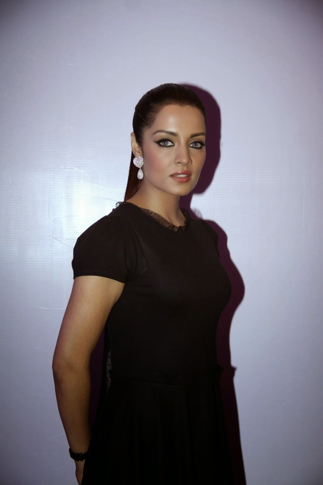 Celina Jaitley Event Imran Khan Launched Debut Music Album