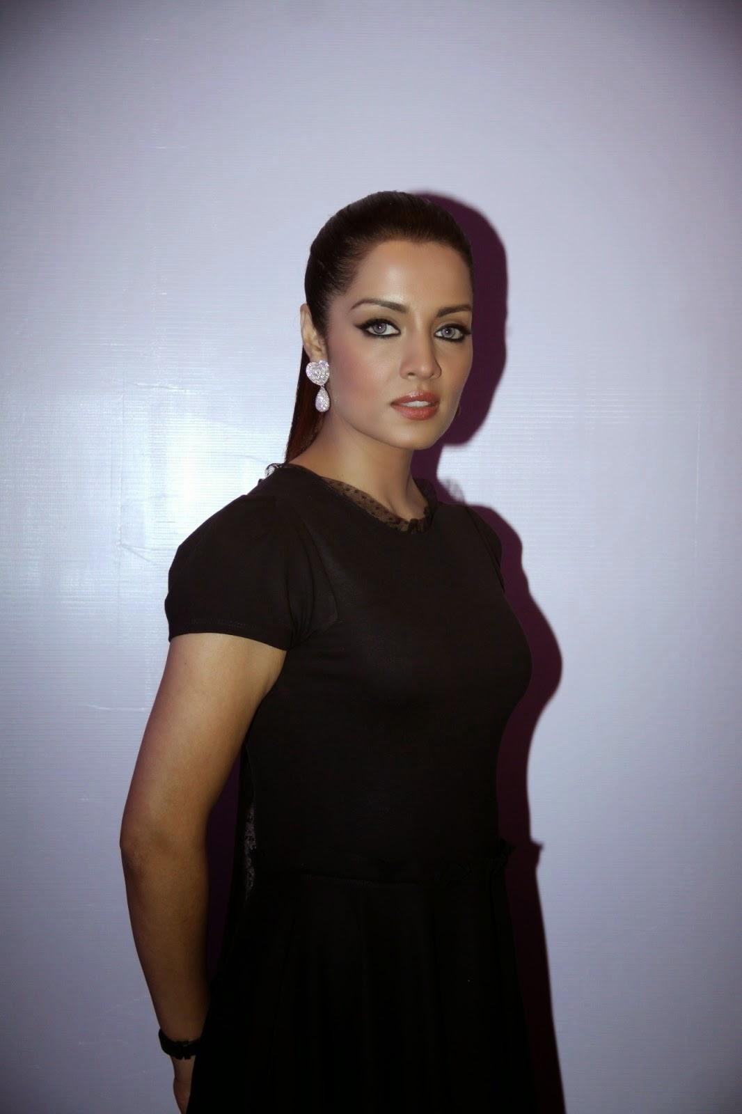 Celina Jaitley Event Imran Khan Launched Debut Music Album