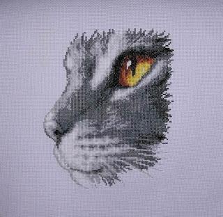 кот от вервако