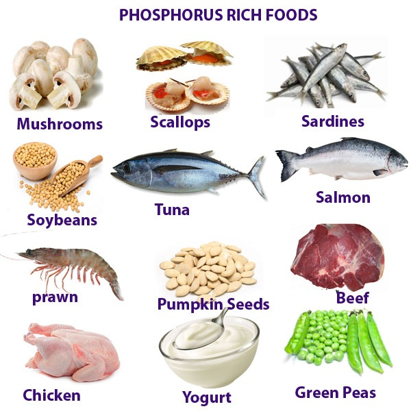 Health Benefits Of Phosphorus Rich Foods