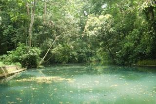 danau di hutan lindung suranadi