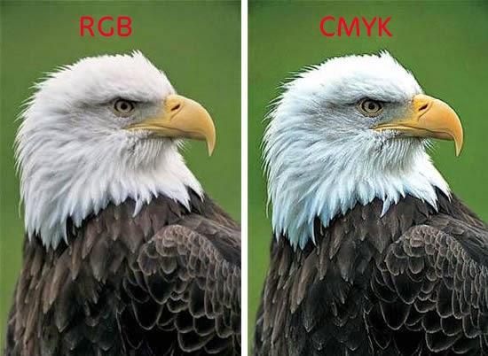 الفرق في الجودة اللونية للصور