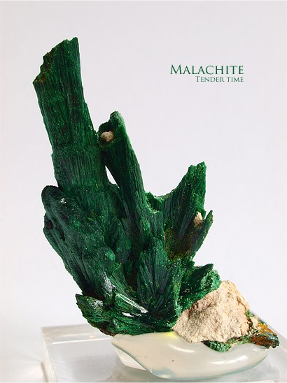 マラカイト 孔雀石 Malachite Kerouchen Middle Atlas Mts,Morocco