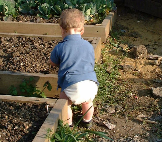 Toddler having fun gardening