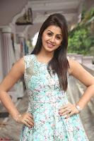 Nikki Galrani at Prema leela pelli gola trailer Launch ~  Exclusive 113.JPG