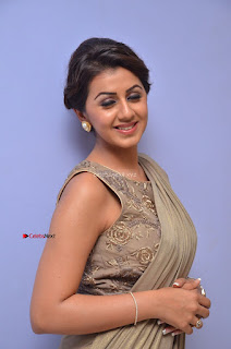 Nikki Galrani in Saree 039.JPG